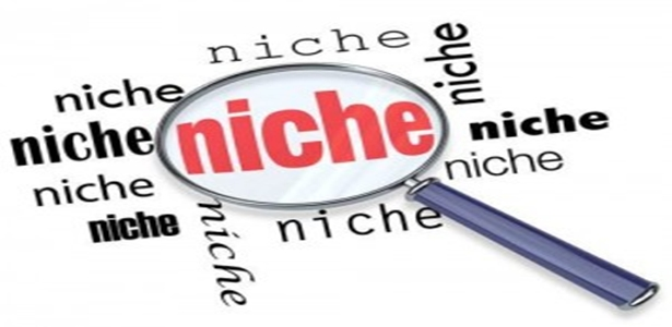 Capitalize your niche