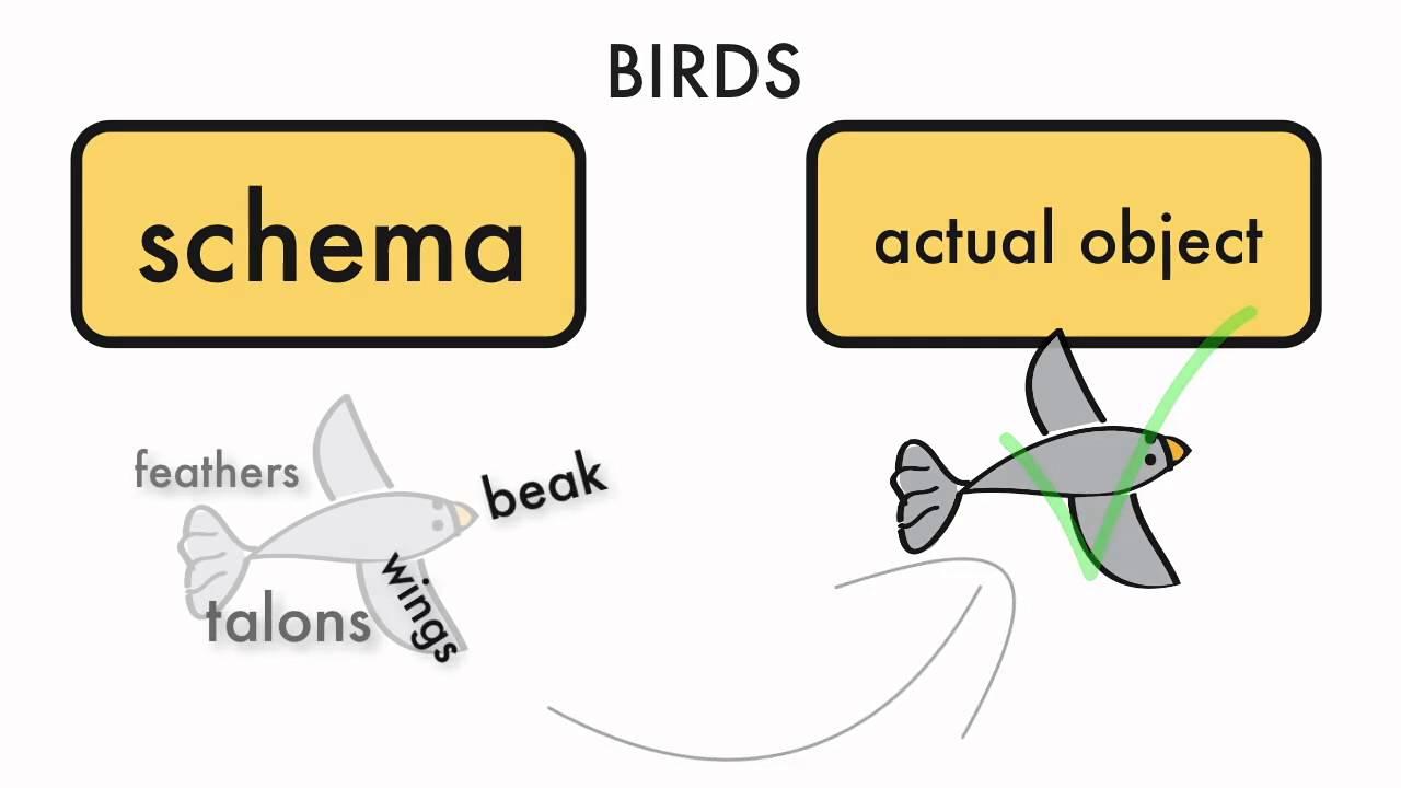 Use offer schema